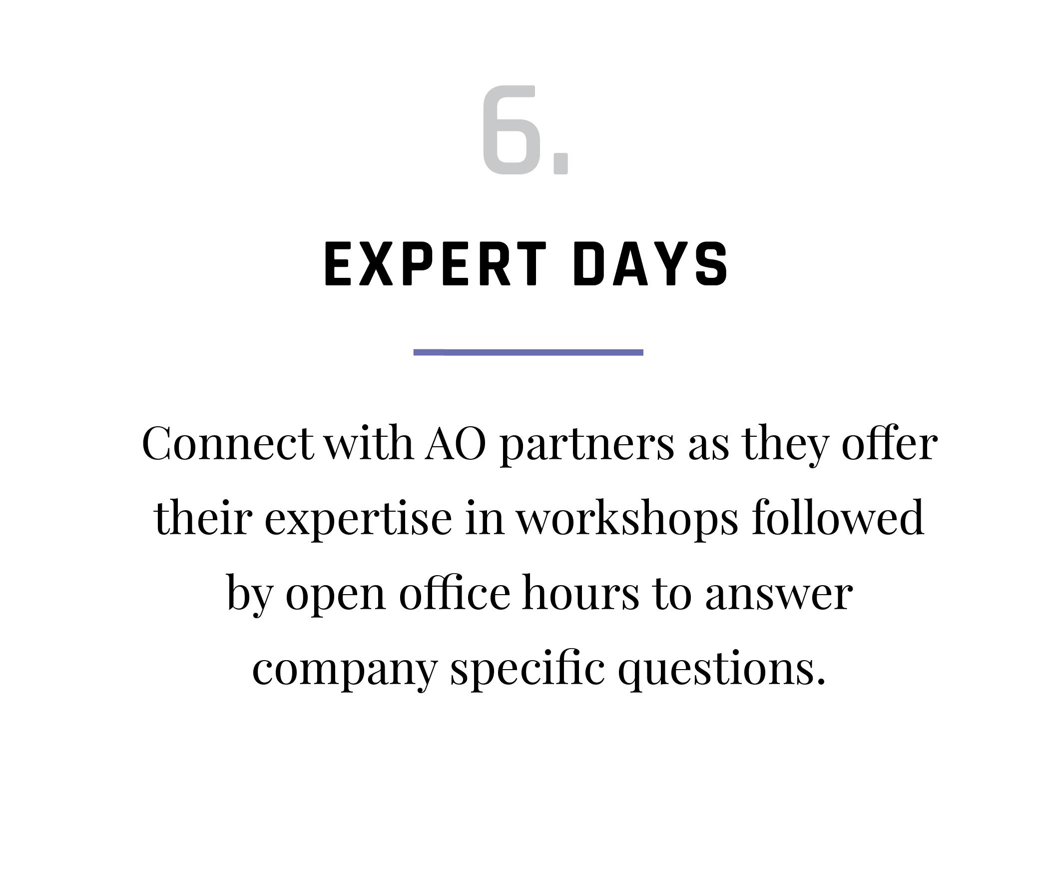 VAP-Program-Activities_Expert Days.png