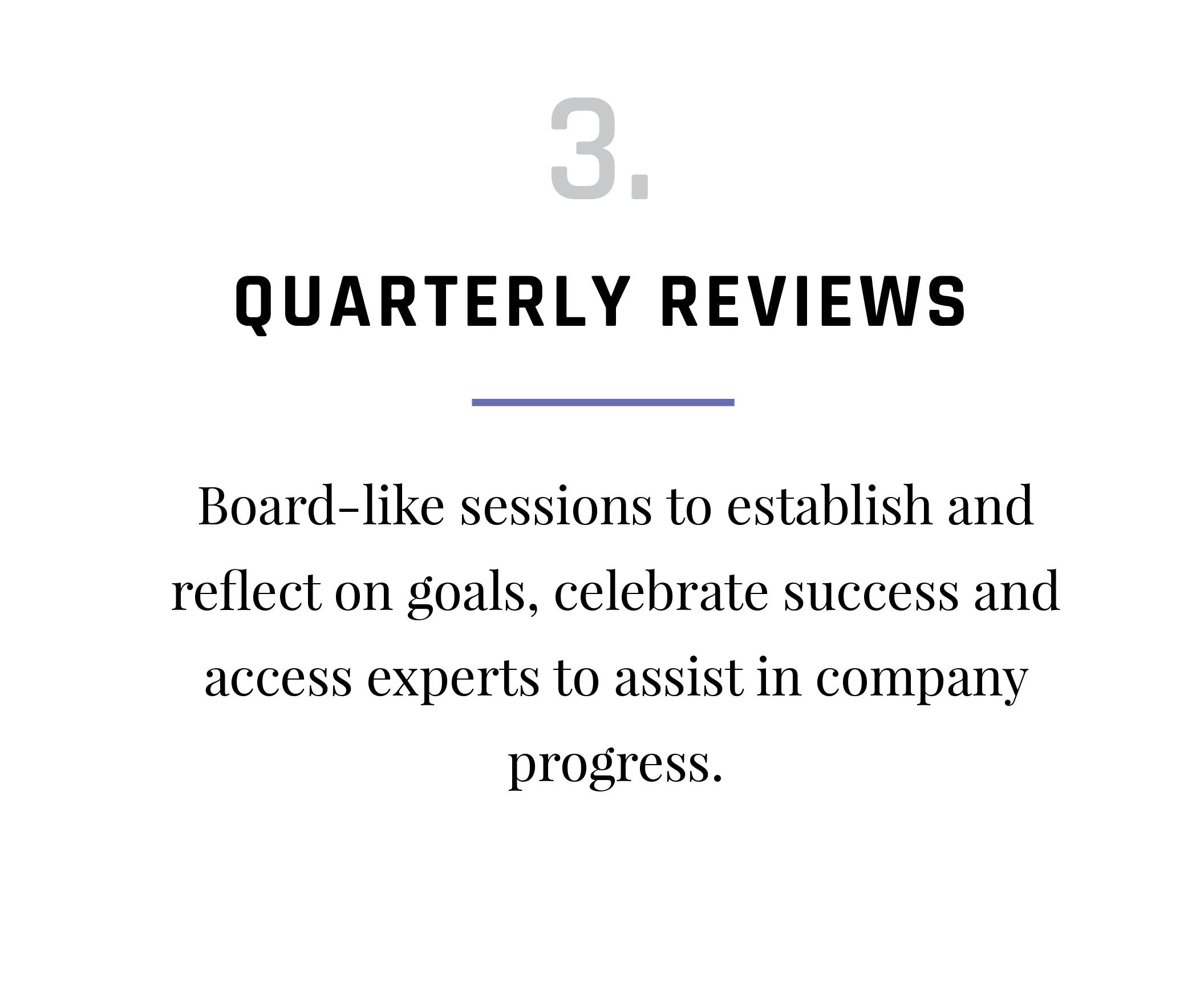 VAP-Program-Activities_Quarterly Reviews.png
