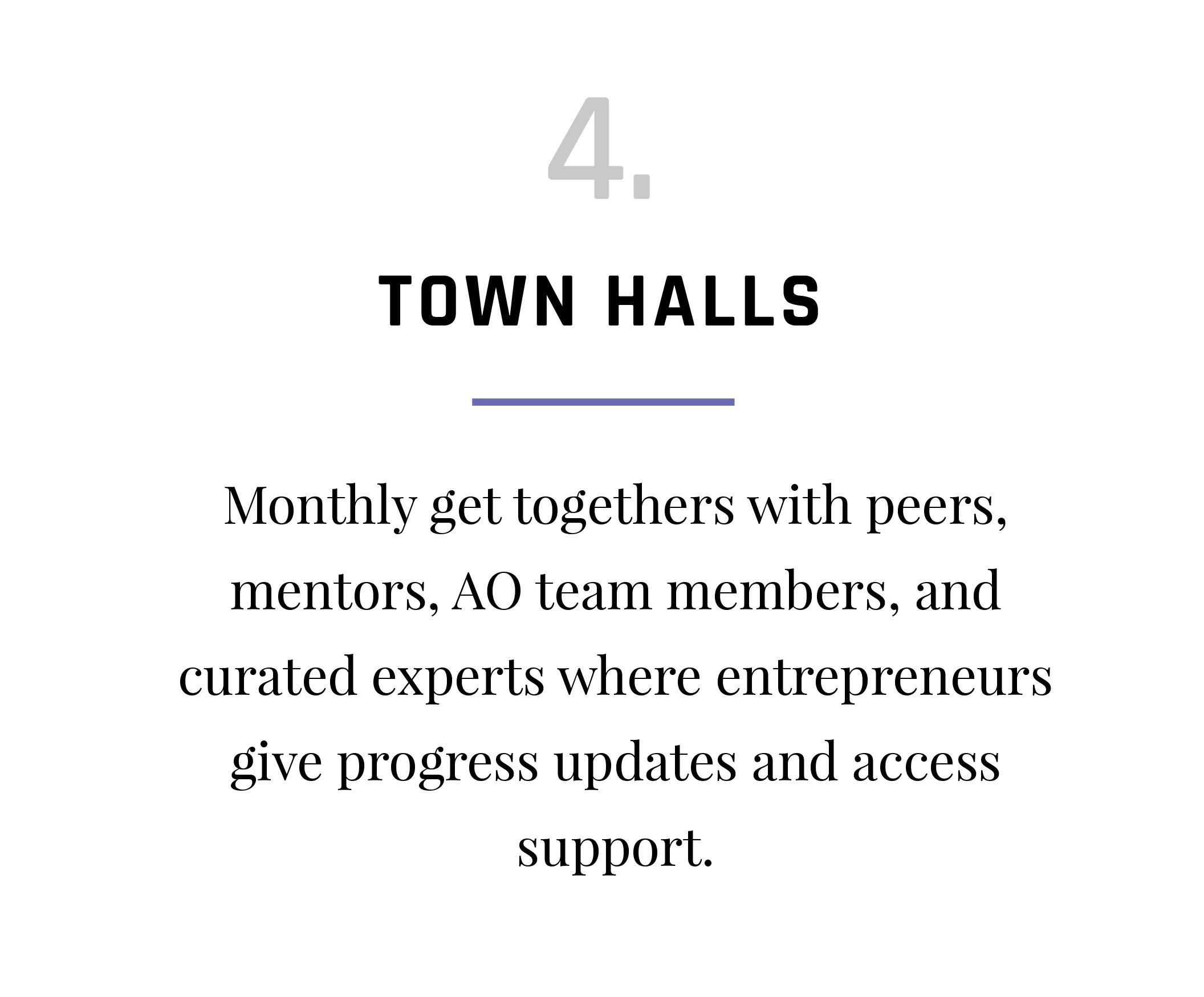 VAP-Program-Activities_Town Halls.png
